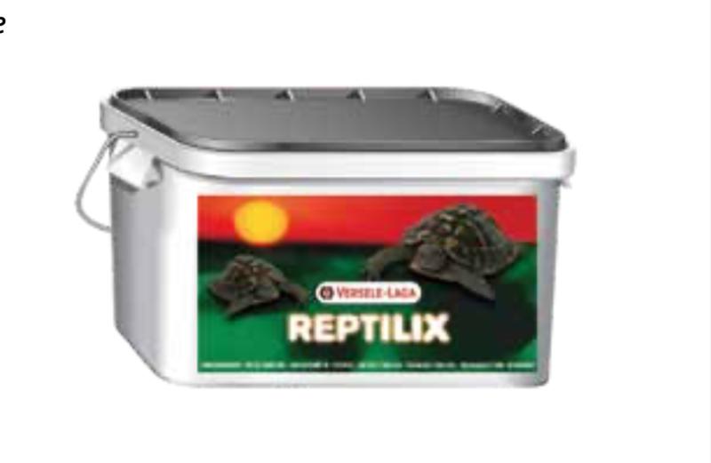 Reptilix, tartarughe da terra